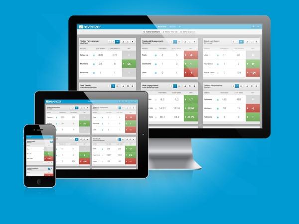 Revenizer mobile responsive web example