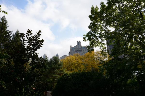 view-from-central-park-2