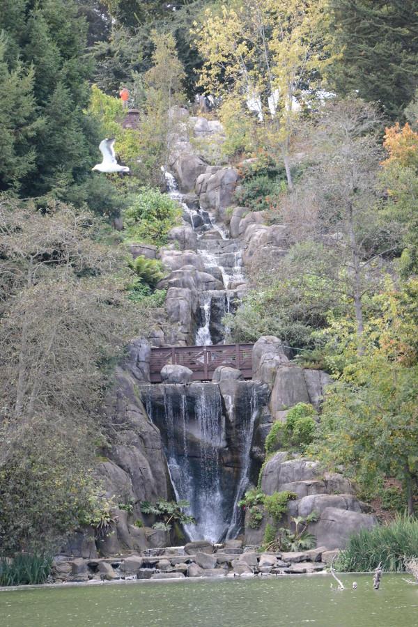 golden gate park waterfall