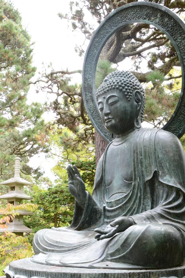 buddha at the japanese tea garden
