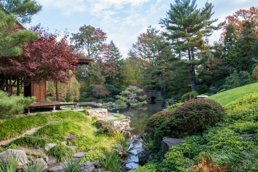 Looking out at the Japanese garden at Shofuso in Philadelphia.