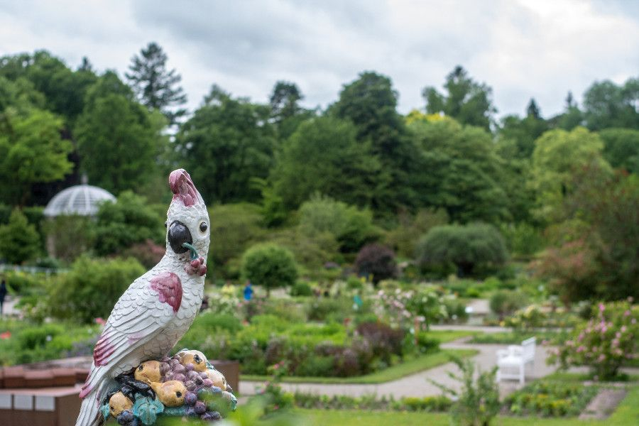 Parrot statue from Nymphenburg Porcelain Factory overlooking Munich Botanical Garden in Germany.