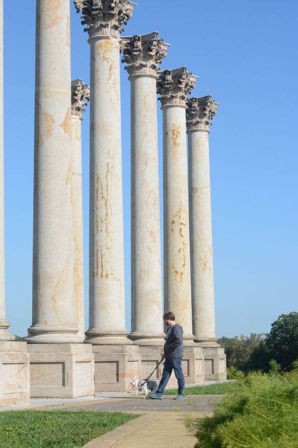 The dog friendly Capitol Columns at the National Arboretum.