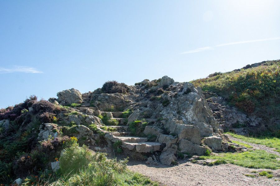 Steps built into the Howth cliff walk.