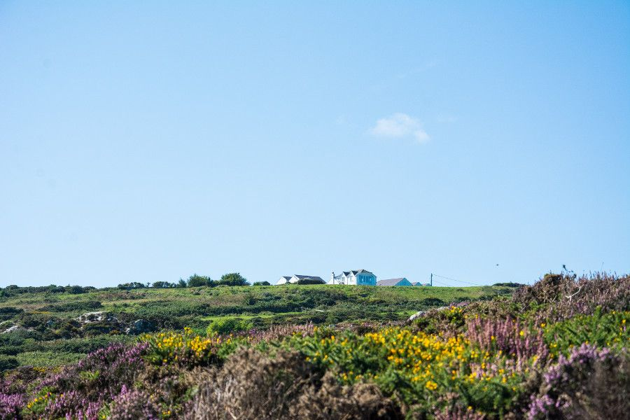 A quiet farm sits at the top of the cliff in Howth.