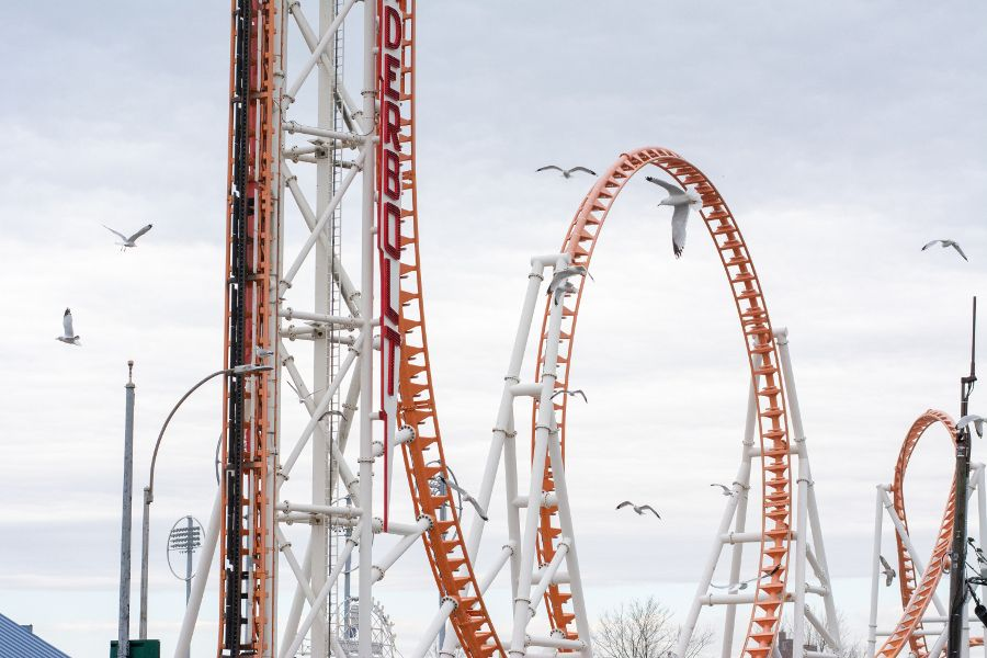 Seagulls soar around a roller coaster at Coney Island.