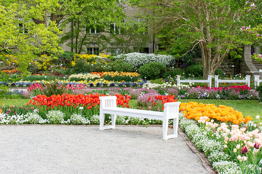 A bench at the Botanical Garden gives a taste of Munich in spring.