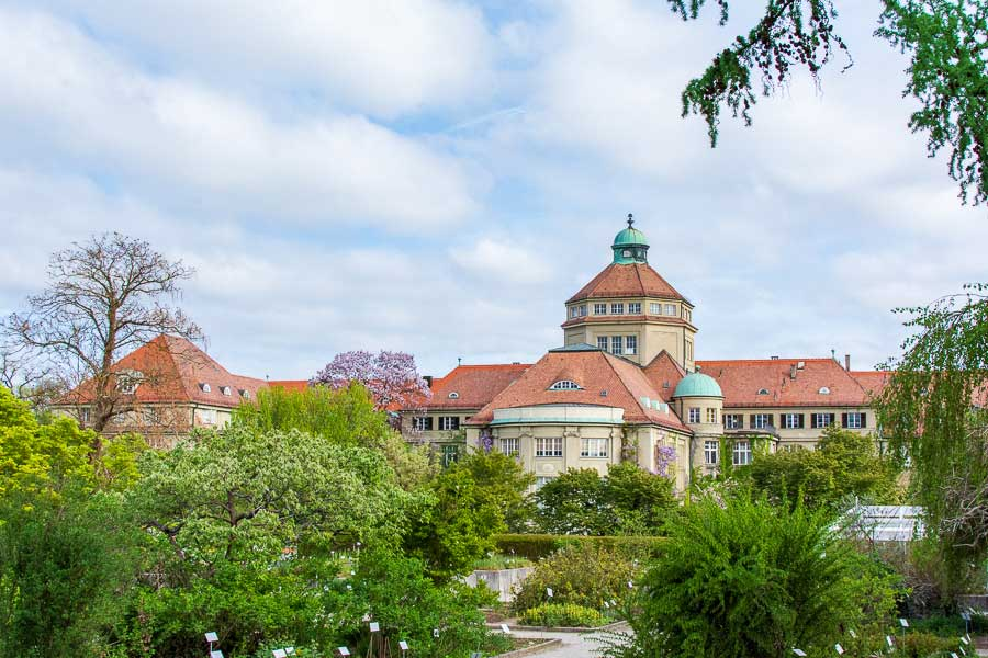 The Munich Botanical Garden sits in western Munich.