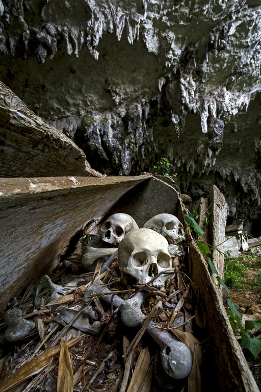 Lombok (village), Sulawesi, Indonesia, ancestors bones displayed in a dilapidated coffin at cave entrance