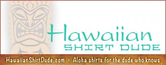 TO15_HawaiianShirtDude