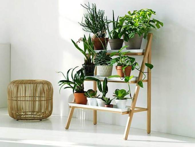 Outdoor Plant Rack Stands for Multiple Plants
