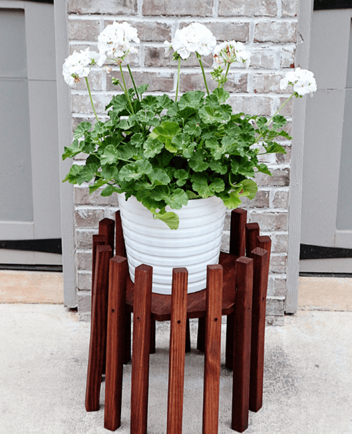 plant stands outdoor
