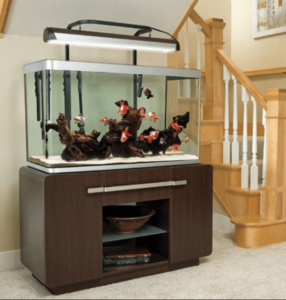 Exceptional Aquarium Furniture Design