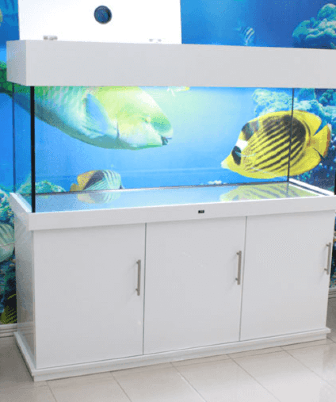 Aquarium Furniture Stand White