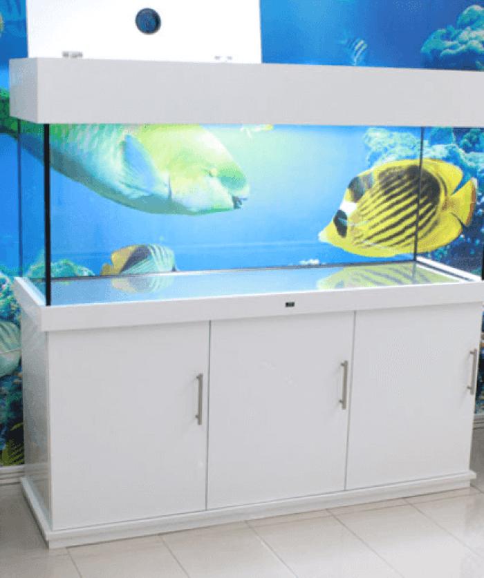 Aquarium Furniture Stand White