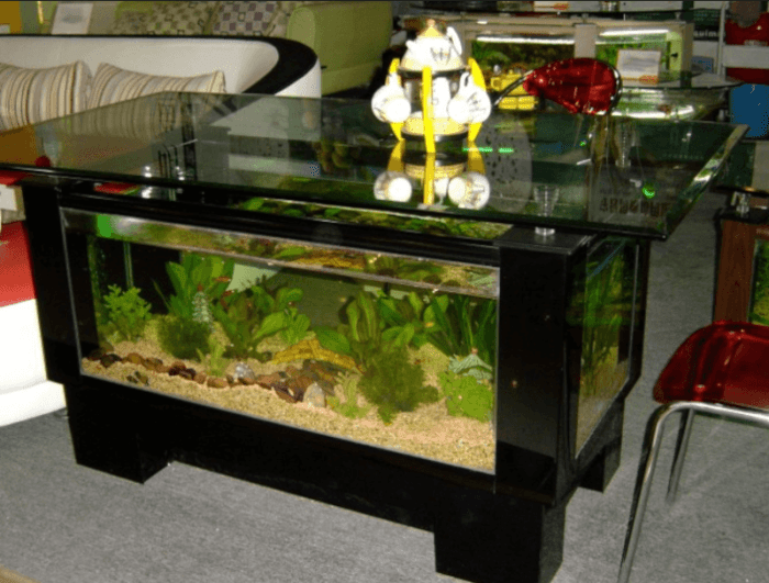 Fish Aquarium Stands