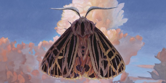chairlift moth-3