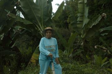 Les habitants de la Réunion