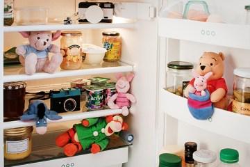 la photo du mois theme dans mon frigo