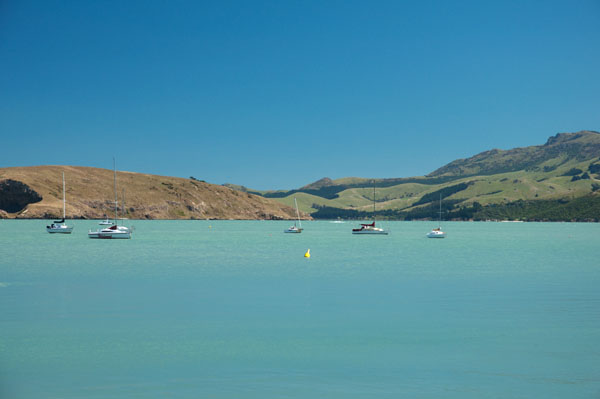 Corsair Bay Nouvelle-Zélande