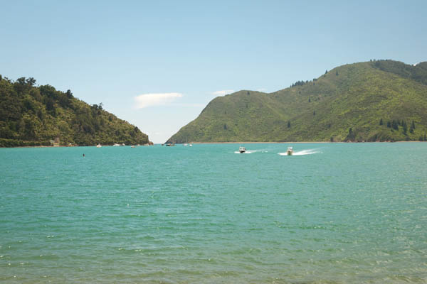 Plage de Okiwi Bay en Nouvelle Zélande