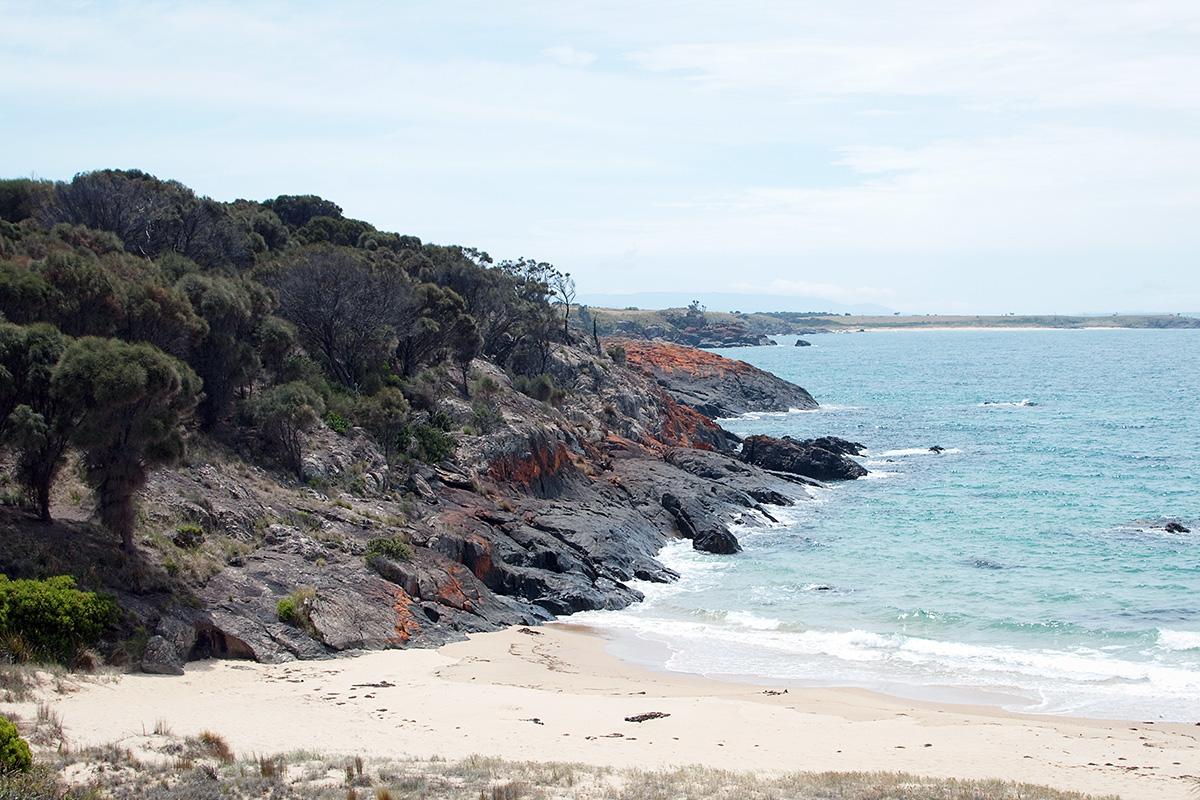 Spicky Beach Tasmanie