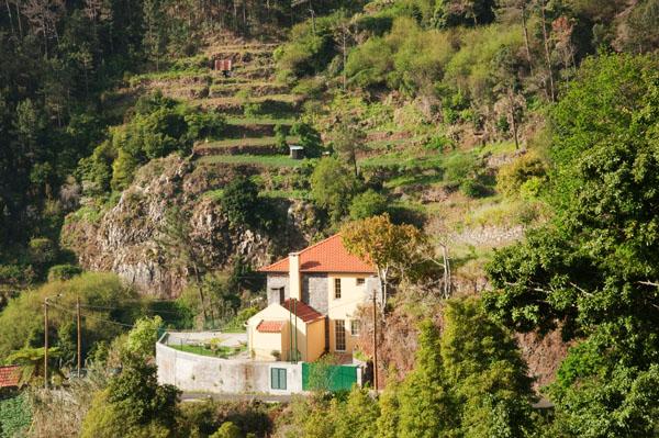 Nord de Funchal
