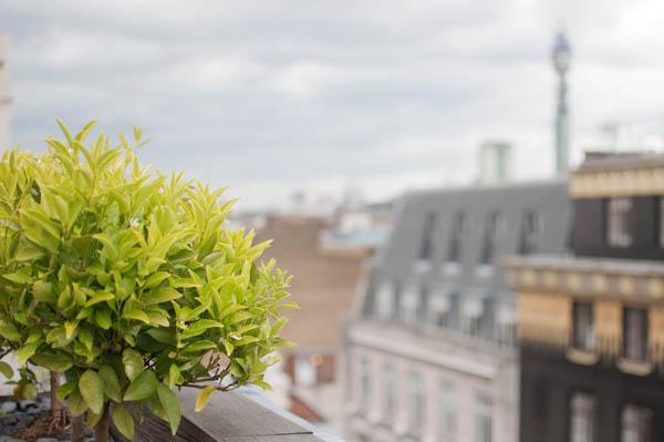 Aqua London Rooftop