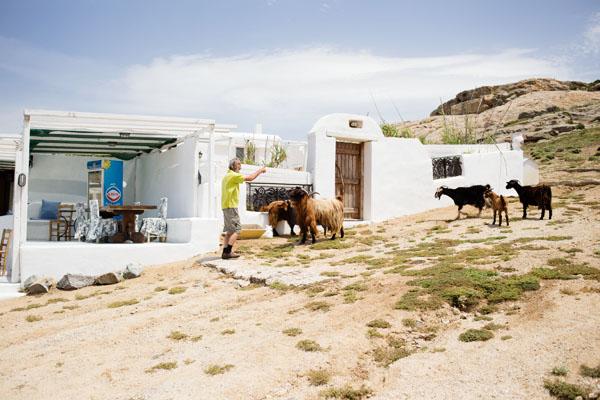 Cap Tarsanas à Agia Anna