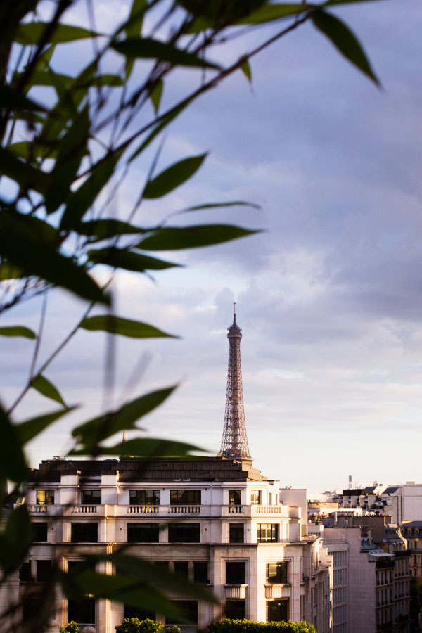 Bar W de l'hôtel Warwick Champs-Elysées