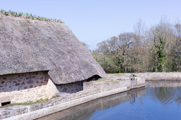 Moulin à eau de Marie Ravenel