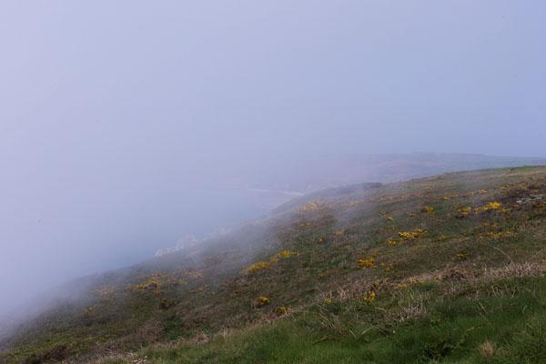 Nez de Jobourg sous la brume