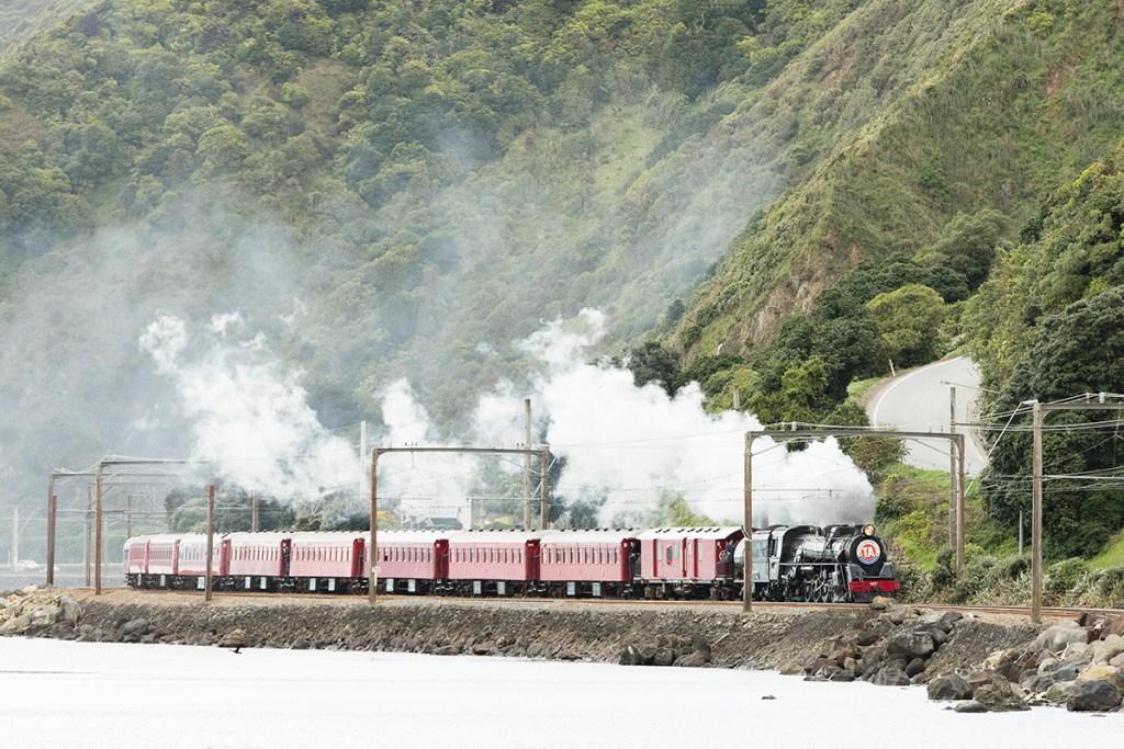 Steamed Train Wellington