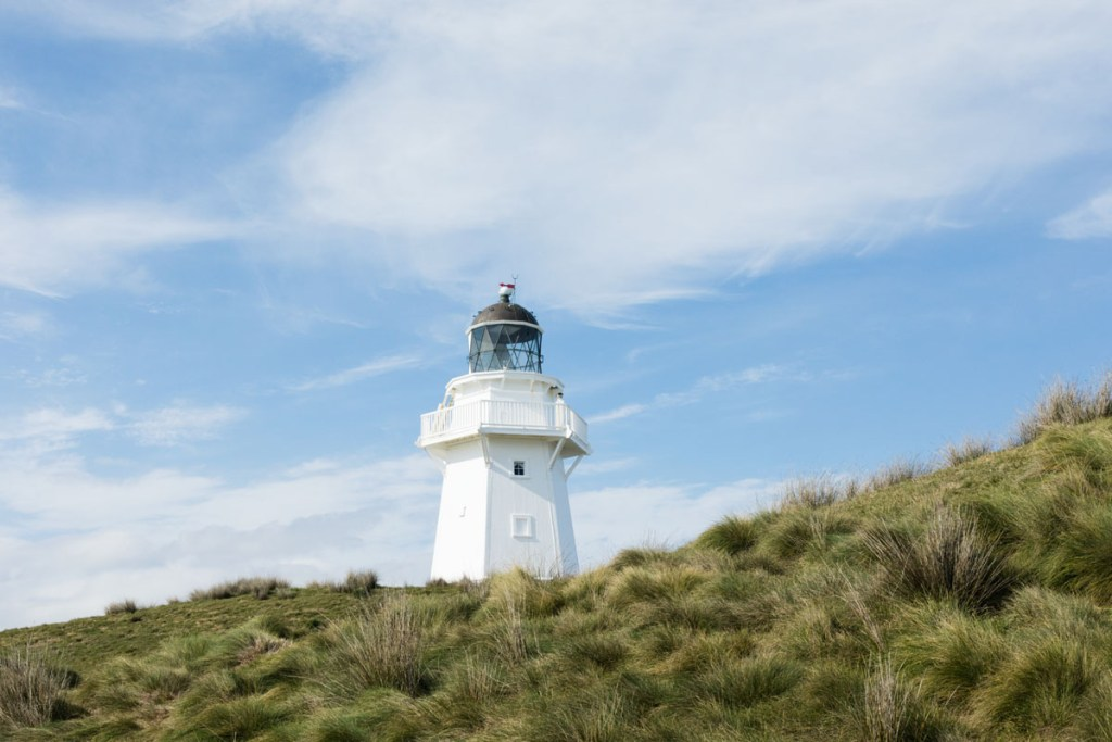 Waipapa Point Catlins NZ