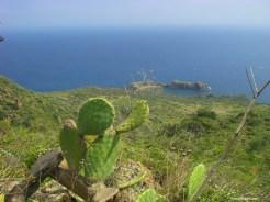 Côte est de Panaréa