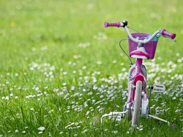 13521292 – cycling for children in the grass