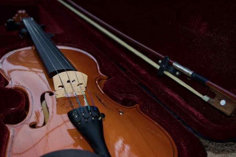 Foto de um violino dentro de um estojo de veludo bordô.