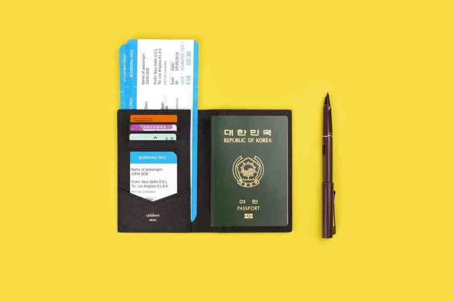 Imagem de porta passaporte com documentos e passagem e caneta ao lado.