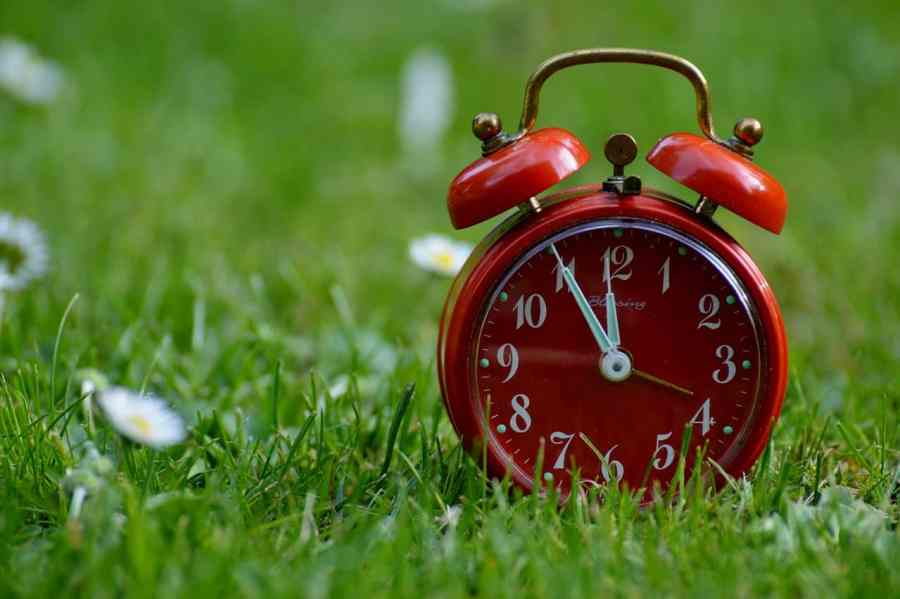 Um despertador analógico em cima do gramado.