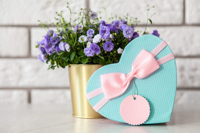 Na foto uma caixa de presente em formato de coração em frente a um vaso de flor.