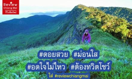 ดอยสวย ม่อนใส อดใจไม่ไหว ต้องทวิตโชว์ ตามมาดูที่ #reviewchiangmai