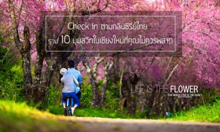 Check in ตามกลิ่นซีรีย์ไทย รวม 10 มุมสวีทในเชียงใหม่ที่คุณไม่ควรพลาด