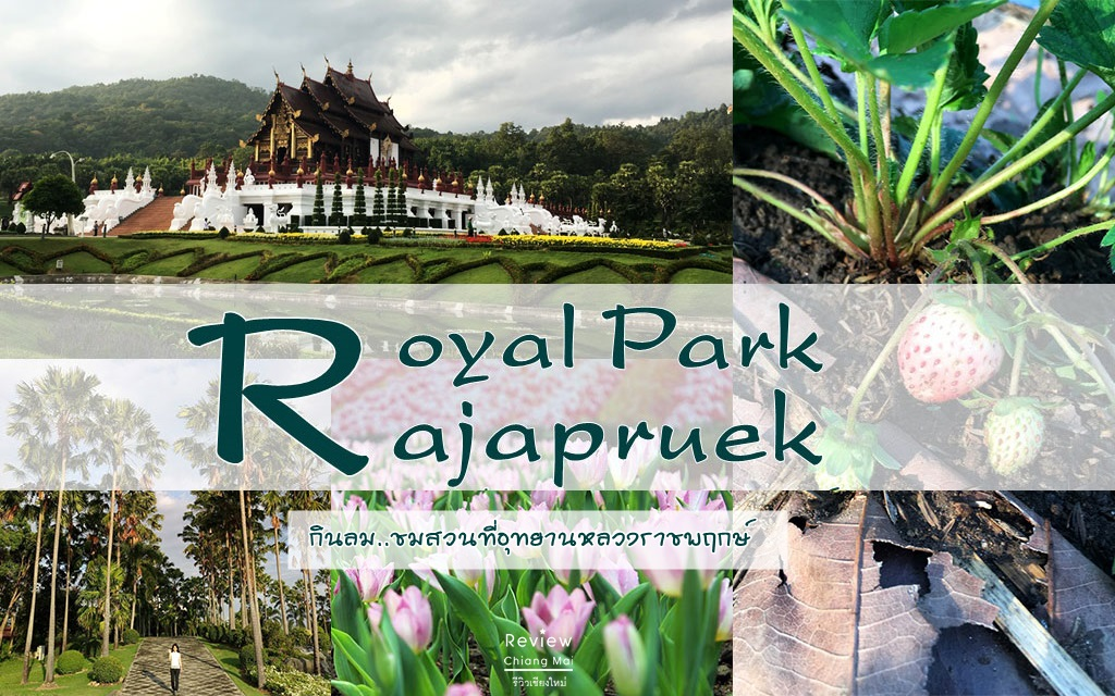 Royal Park Rajapruek