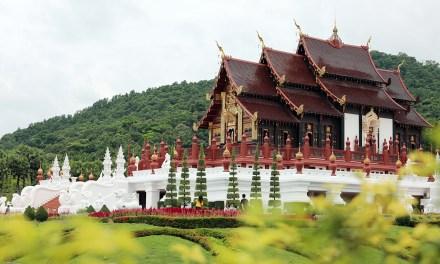 พาแม่เที่ยวฟรีที่อุทยานหลวงราชพฤกษ์ 10-14 สิงหาคม 2560