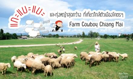 """แกะแบะแบะ และทุ่งหญ้าสุดกว้าง ที่เที่ยวใกล้ตัวเมืองโคตรๆ """"Farm Cowboy Chiang Mai"""""""