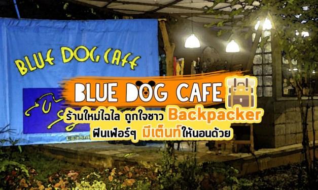 Blue Dog Cafe ร้านใหม่ไฉไล ถูกใจชาว Backpacker ฟินเฟ่อร์ๆ มีเต็นท์ให้นอนด้วย