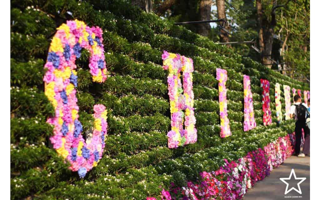 มหกรรมไม้ดอกไม้ประดับ ประจำปี 2562 ครั้งที่43