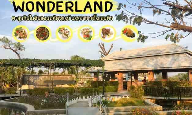Wonderland ตะลุยกินในดินแดนมหัศจรรย์ บรรยากาศโรแมนติก