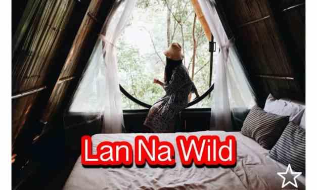 Lan Na Wild ที่พัก + Onsen กลางป่าใหญ่ รีวิวเชียงใหม่