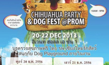 Chihuahua Party & Dog Fest